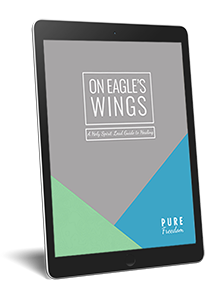 On Eagle's Wings: A Holy Spirit Lead Guide to Healing